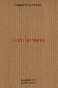 Citronnier_h