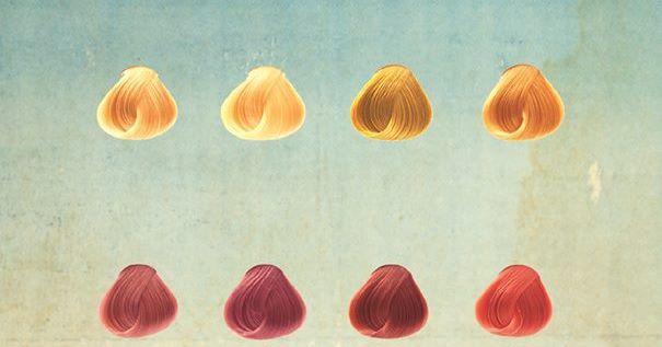 Les Blondes, Emily Schultz