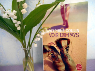 Voir du pays, Delphine Coulin, Le Livre de Poche