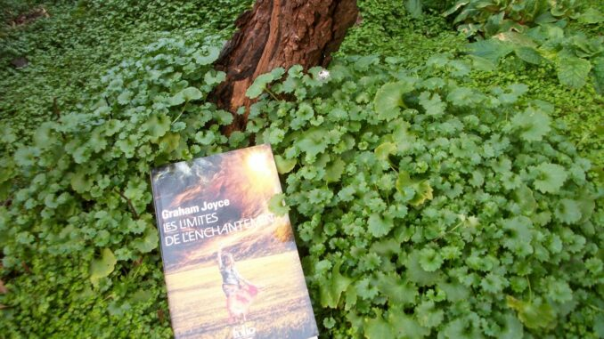Les Limites de l'enchantement, Graham Joyce, Folio SF