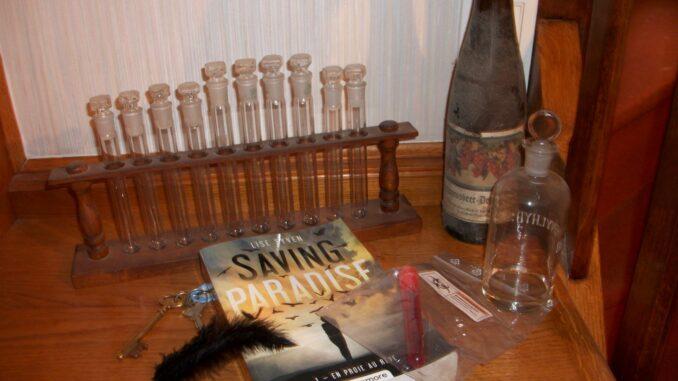 Saving Paradise, En proie au rêve, Lise Syven, Castelmore