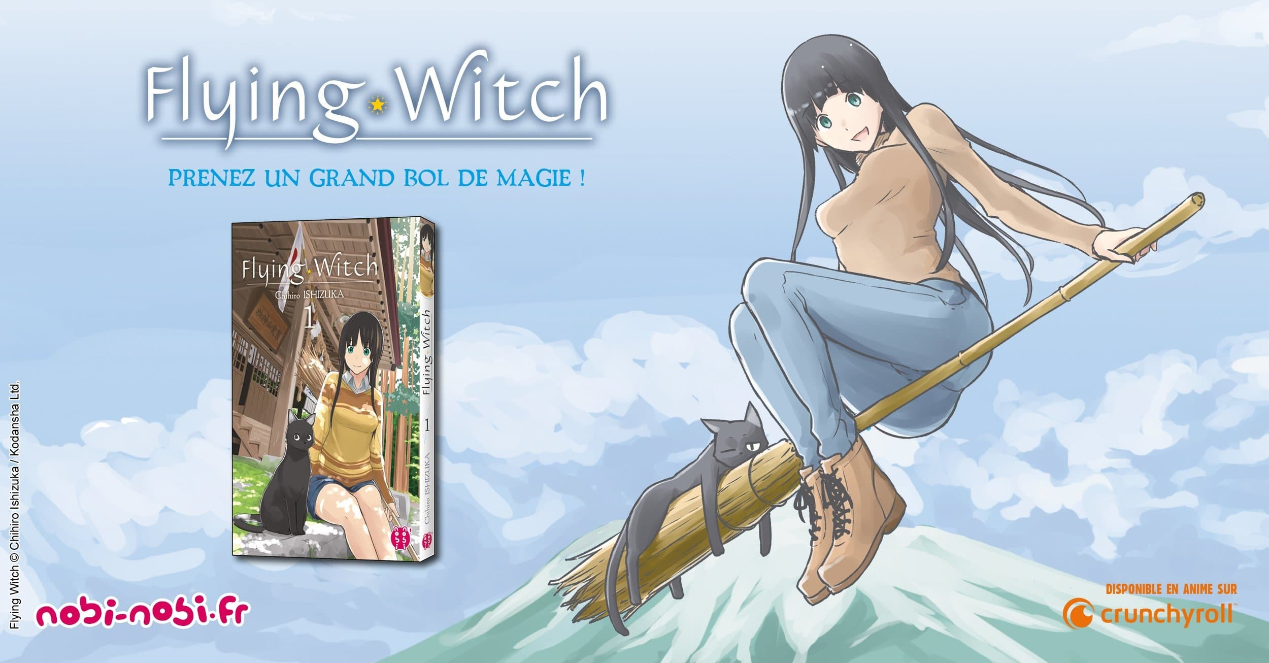"""Résultat de recherche d'images pour """"flying witch"""""""