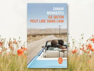 Ce qu'on peut lire dans l'air, Dinaw Mengestu